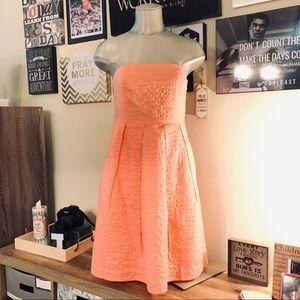 J.Crew Strapless Cotton Dress sz 6